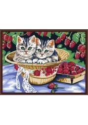 Раскраски по номерам. Котята в саду, 30*40 см