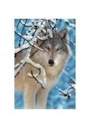 Пазл Castorland Волк, 1000 деталей