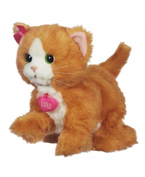 Игривый котенок Дэйзи интерактивный FurReal Friends Дейзи , Hasbro  A2003H